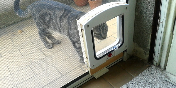 How to install a cat door on a mosquito net