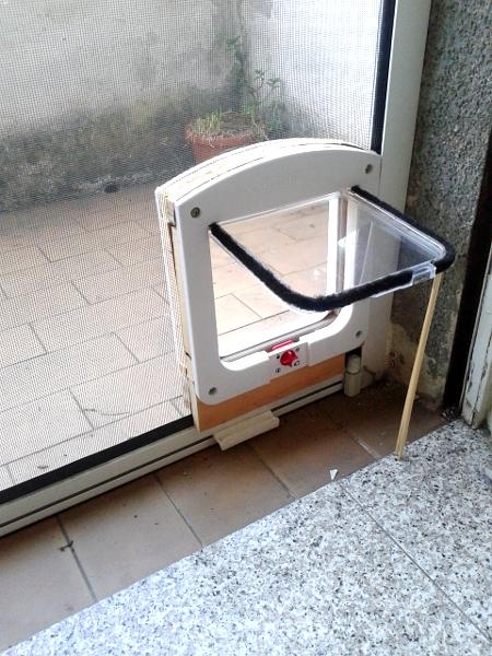 Zanzariere con passaggio per gatti termosifoni in ghisa - Porta per gatti ...