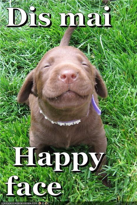 happy grateful gratitudine felicità
