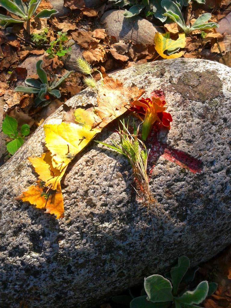 autunno fall autumn