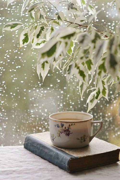 rain book teacup tazza tè pioggia libro