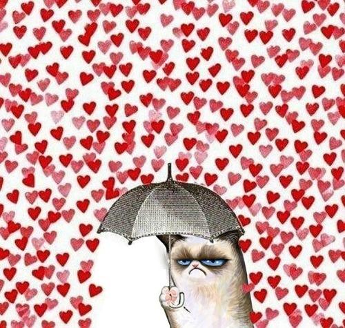 grumpy cat valentine san valentino