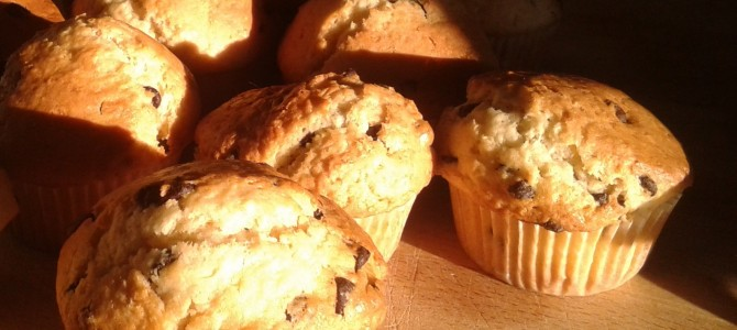 Experiment muffin – almost a family tale