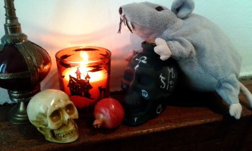 Blackboard skull – How to